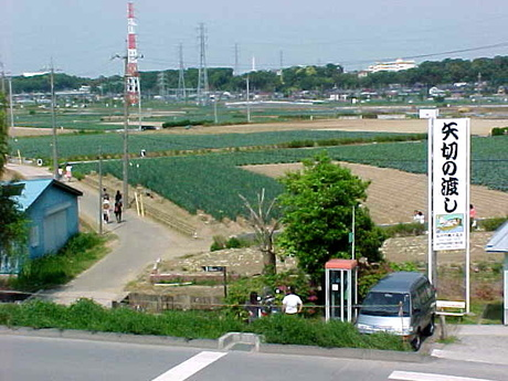 Nogimu050501