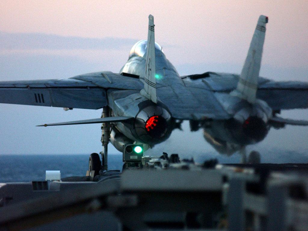 F 14 (戦闘機)の画像 p1_26